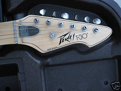 Peavy T30